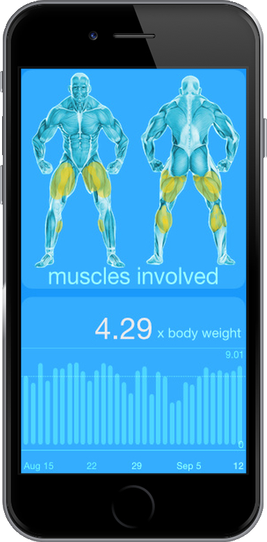 iPhone 6 Sansible muscles involved